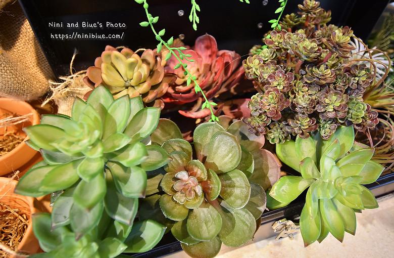 台中乾燥花學植務所11