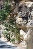 Kreta 2007-2 030