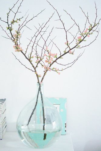quince blossom by wood & wool stool