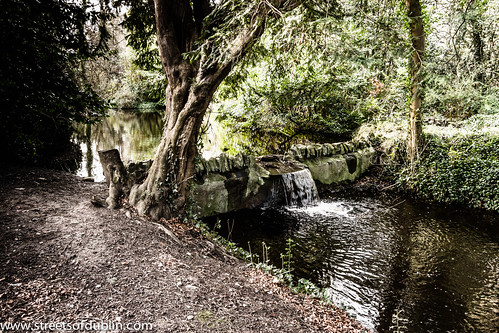 Bushy Park is a large public park in Rathfarnham, Dublin (Ireland) by infomatique
