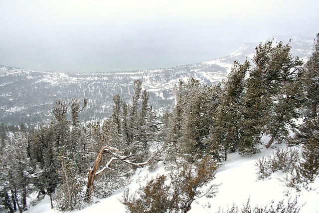 Lake Tahoe, Heavenly gondola, Heavenly snow