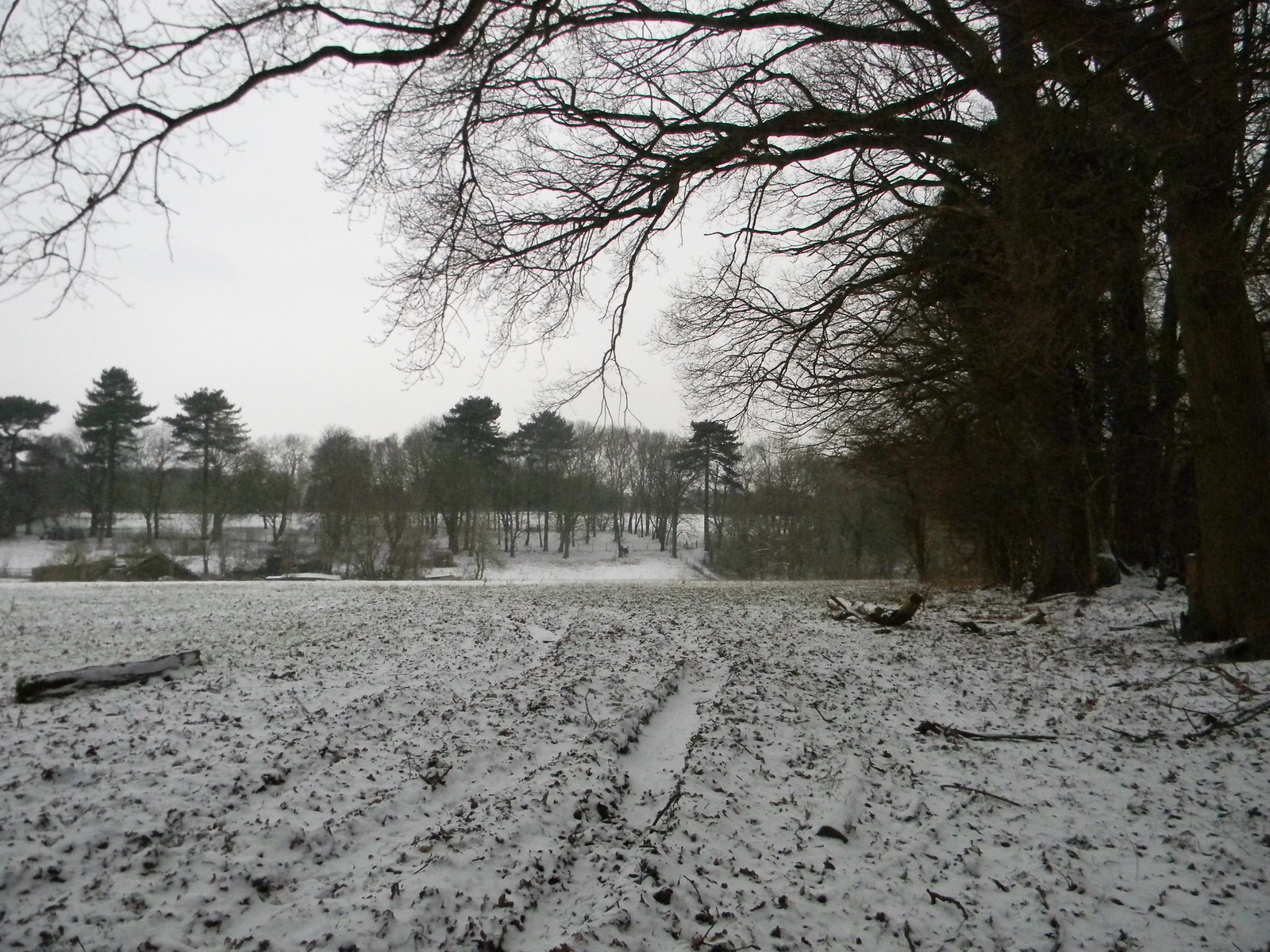 Another snowy field Snodland to Sole Street