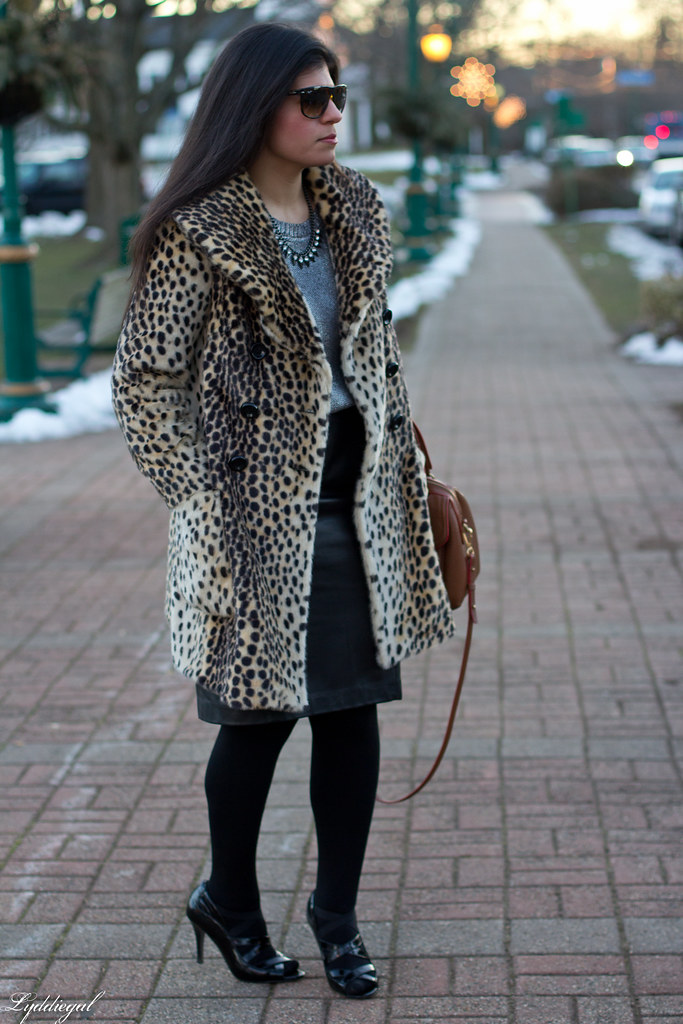 leopardess-2.jpg