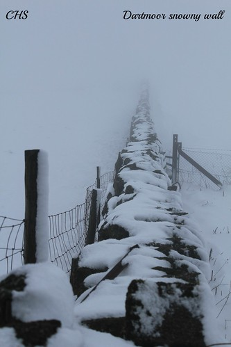 Snowy wall -   Dartmoor - 23rd January 2013 by Stocker Images