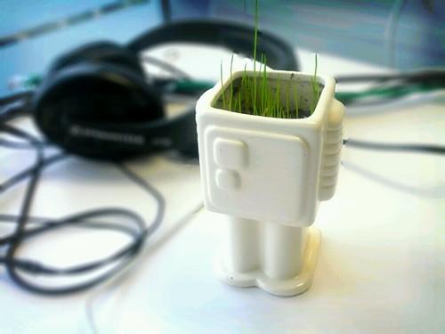 iGrobot, growing