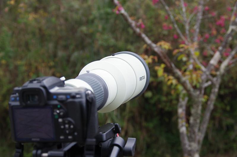 戰魂再起 -- Pentax A* 600mm f/5.6 開箱
