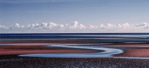 world ireland sea dublin color colour water digital ir bay skin sony tide alien salt infrared kodachrome nex booterstown 5r blinkagain nex5r
