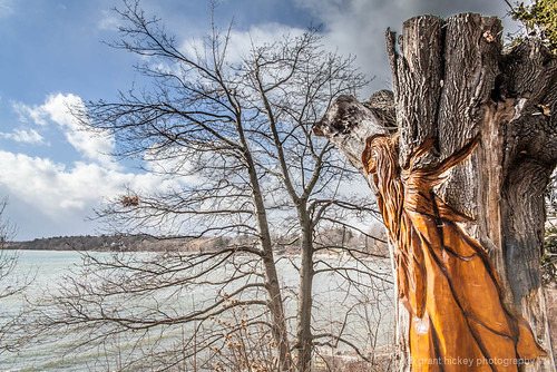 Lake Ontario Guardian by gashphoto