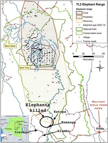 TL2 elephants