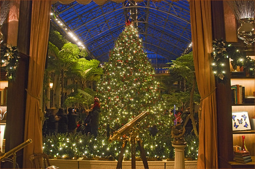 Christmas Tree -- Longwood Gardens Conservatory (PA) December 2012
