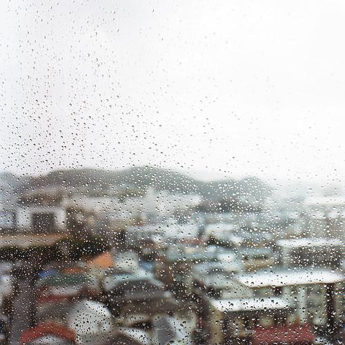 [梅雨] - 無料写真検索fotoq