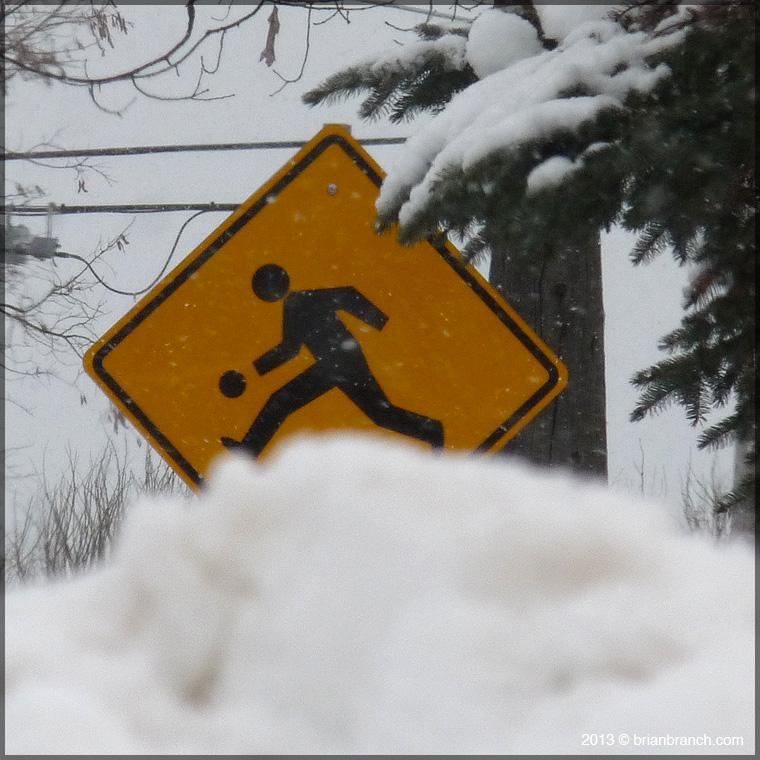 P1290938_snowball