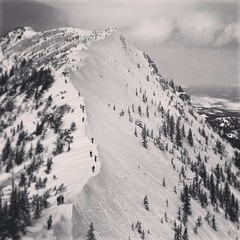 #antsonaridge #bridgerbowl #bridgergulley