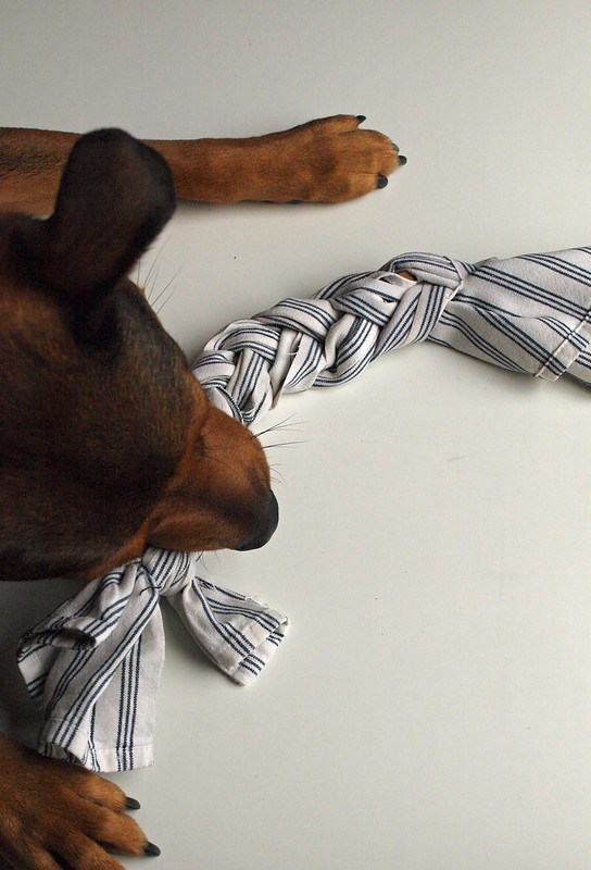 plait attack dog diy toy 11