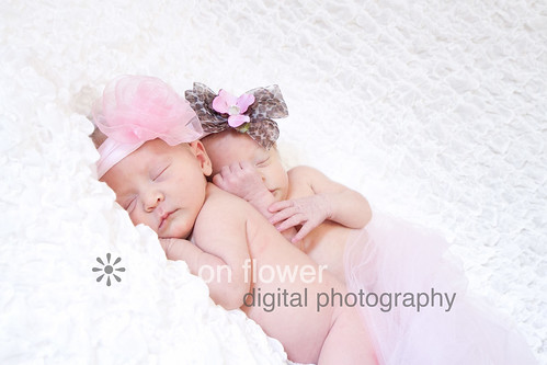 20130224-newborn-194
