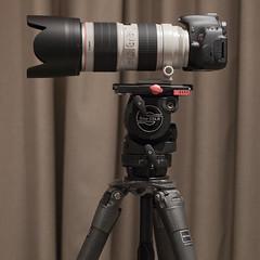 camera operator(0.0), camera lens(0.0), cameras & optics(1.0), single lens reflex camera(1.0), tripod(1.0),
