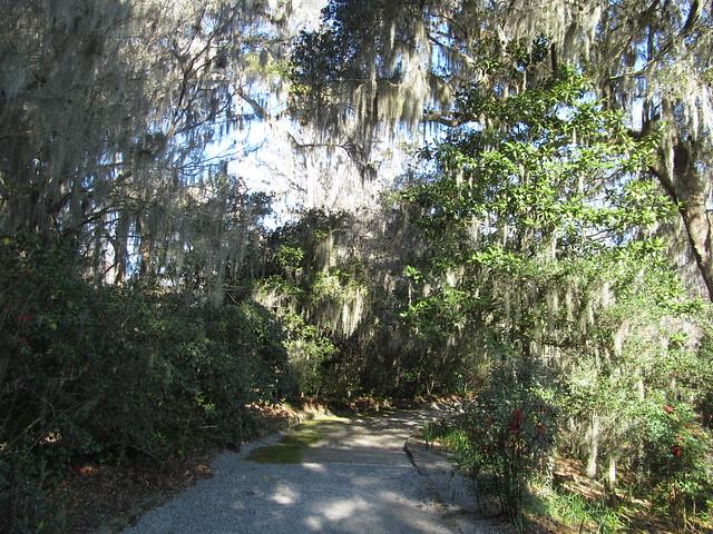 Magnolia Plantation And Gardens Charleston South Carolina Flickr Photo Sharing