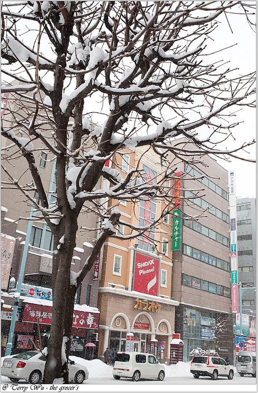 Day2 - 函館市電-五稜郭前-13