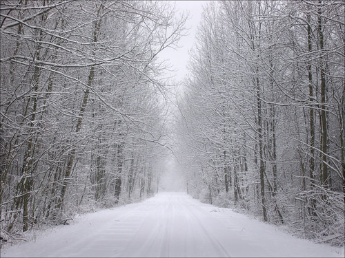 lakeerie ashtabulacounty ohio genevastatepark snow fb 2017