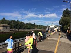 Ferry fun at the Ballard Locks