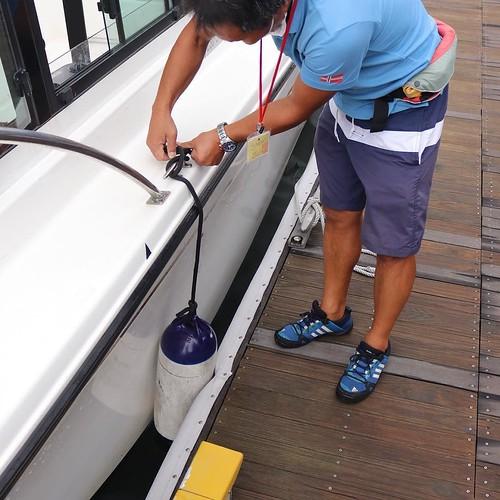 着岸して係留した後、高さを調節するの大事。