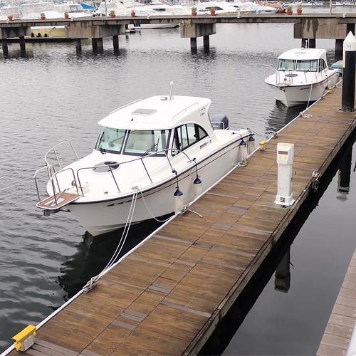 二艇で来ました。僕が操船したのは、後方の船。