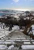 河口部の積雪