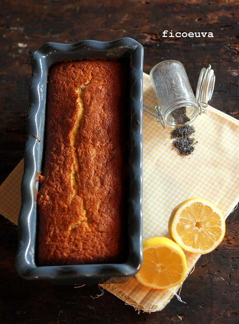 cake papavero limone