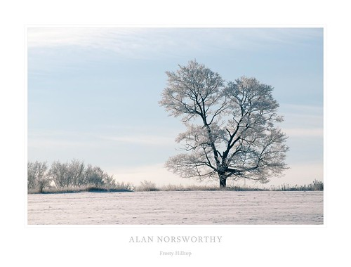 Frosty Hilltop by Alan Norsworthy