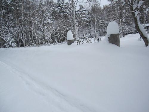 門柱も埋まっています・・・別荘地 by Poran111