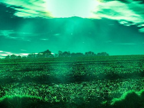 [フリー画像素材] 自然風景, 田園・農場, 緑色・グリーン, 風景 - フランス ID:201303161200