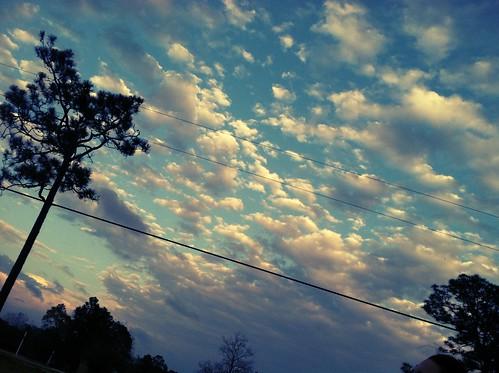 uploaded:by=flickrmobile flickriosapp:filter=chameleon chameleonfilter