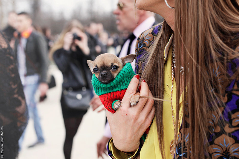 Anna Dello Russo at Fashion Week in Paris FW13