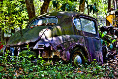 Purple & Green Abandoned car