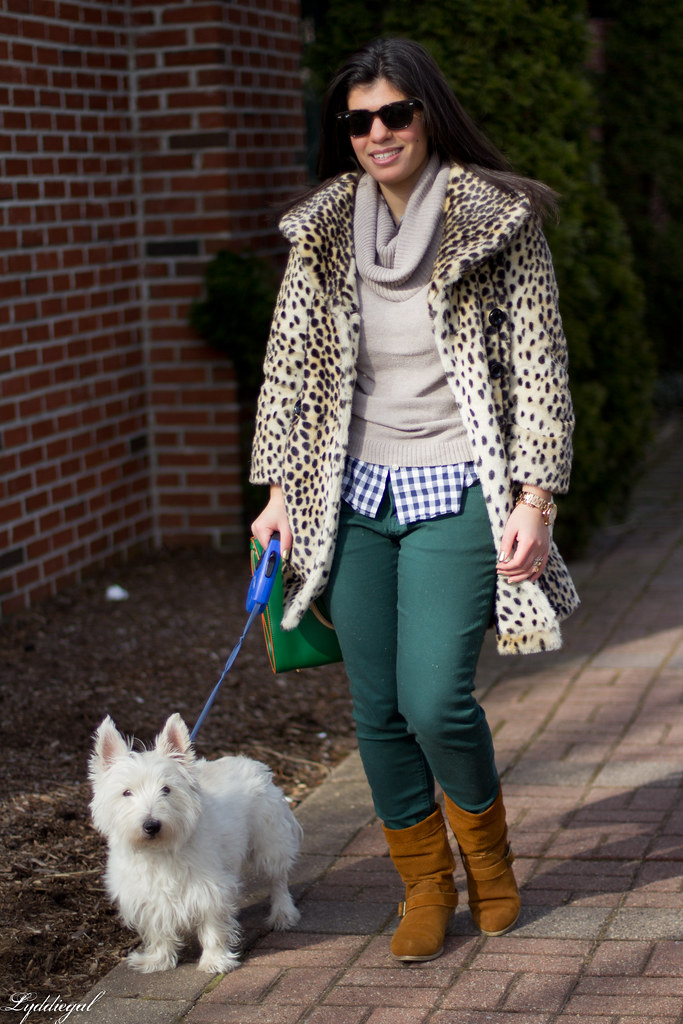 the leopard, the gingham and the westie-2.jpg
