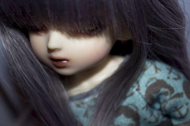 Balthus (crobidoll coffee) et Faustine (crobidoll caged ara) - Page 2 8570727842_0d7bfd0d22_z