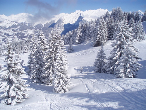 Sunshine and powder in the Grand Massif
