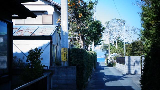 Across the street2
