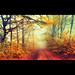 autumn in my eyes / én szememmel az ősz- Explore by heizer.ildi