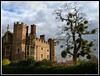 Mistletoe at Hampton Court.