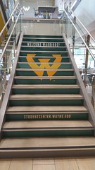 Photo of the Day for Aug. 31, 2016: Welcome back, Warriors!
