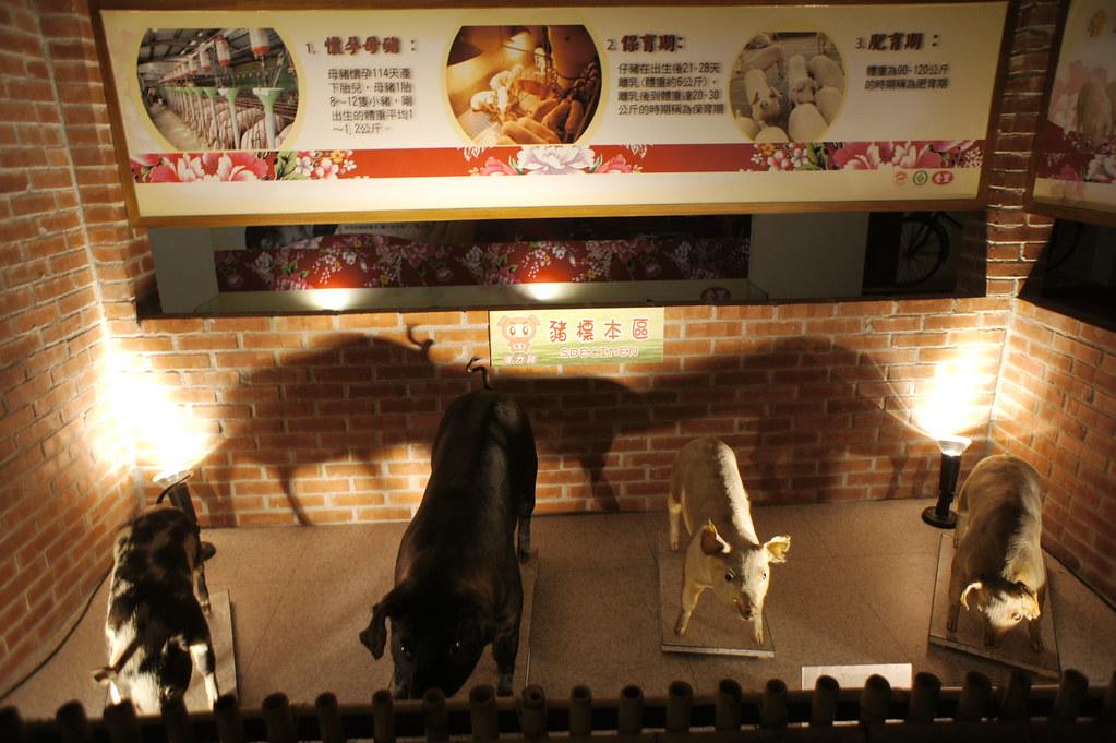 南投市香里活力豬品牌文化館 (4)