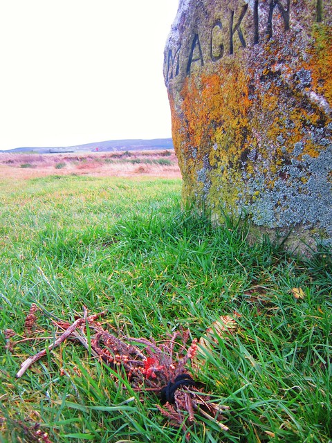 Marker and tribute at Culloden battlefield