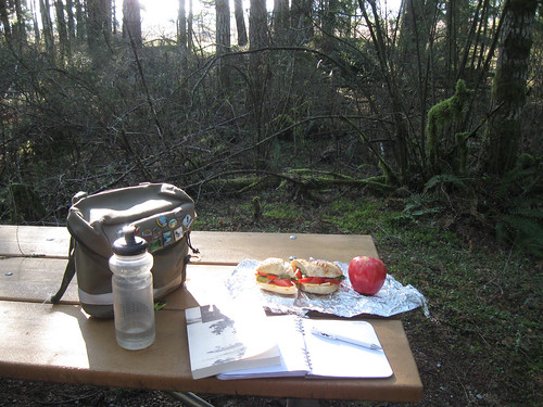 Circumnavigating Capitol Forest - Lunch