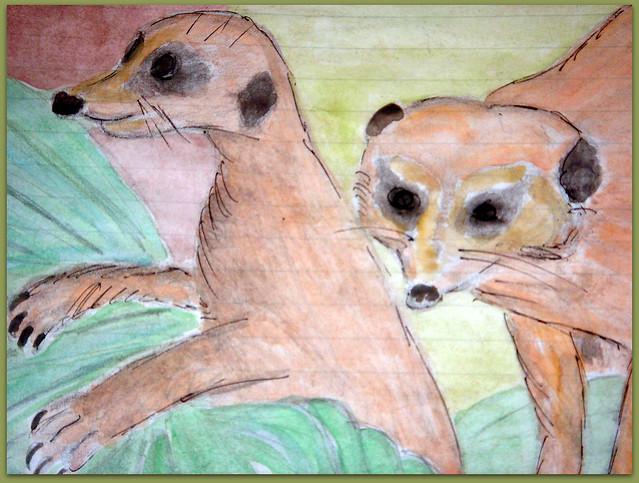 05-Meerkats and Owls Gufo, gufetto, suricato, suricati,