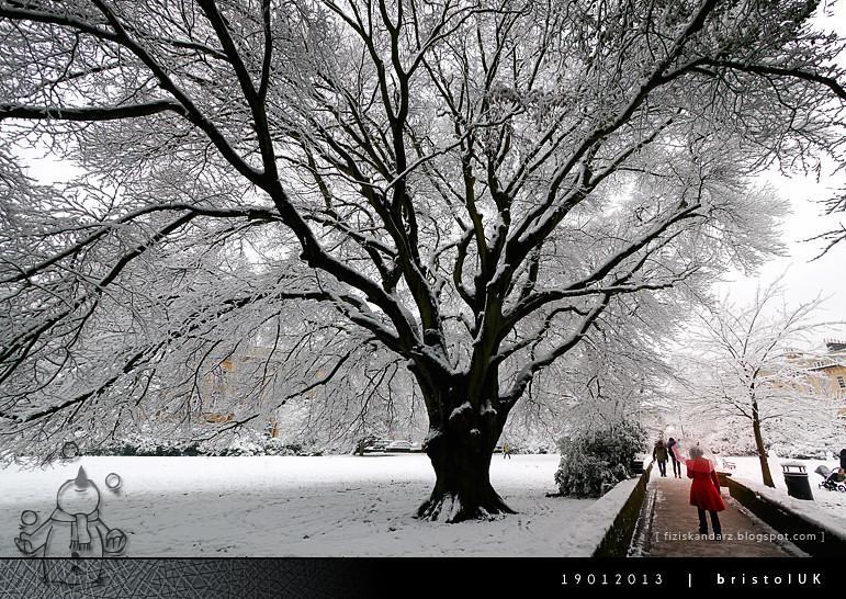 snow_115