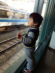 電車をみるよ^^ 2013/3/5