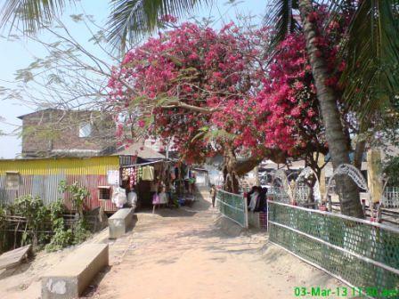 Jhitka Baar (1)