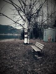 Lonely Empty