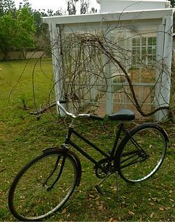 Gary-scott-bike